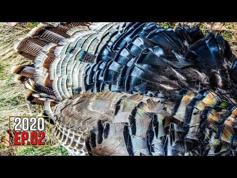 SECOND GOBBLER DOWN! (Catch, Clean, Cook) - Washington Public Land | 2020 Hunting Season EP.02