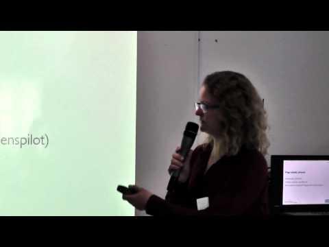Dorthe Kingo Vesterlund: Wage subsidy schemes