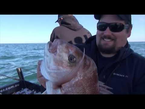 SNAPPER SMASHING SOFT BAITS - YouFishTV
