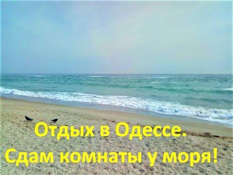 Отдых в Одессе! Сдам комнаты...квартиры в частном доме у моря ! Золотой берег!