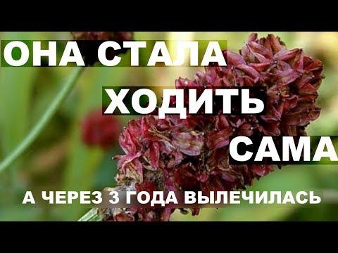 Рак матки.  Это растение излечит рак.  Живой пример