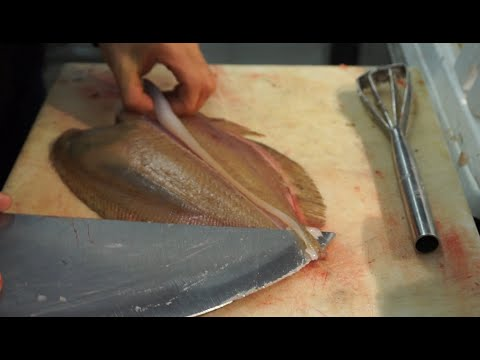 Fishmonger Cutting A MEGRIM In PERFECT Fillets. ( Lepidorhombus Whiffiagonis ).   ASMR