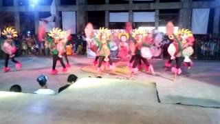Teracandaba - BYC Bambang
