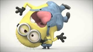 Hdvidz In Minions   Funny Scenes