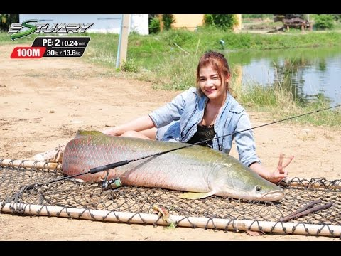 Arapaima 80KG with PE2 ESTUARY by pioneer tackle