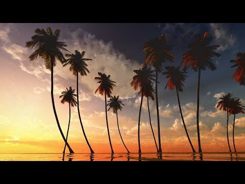 "Peaceful Music, Instrumental Music, Flute Music ""Beautiful World India"" by Tim Janis"