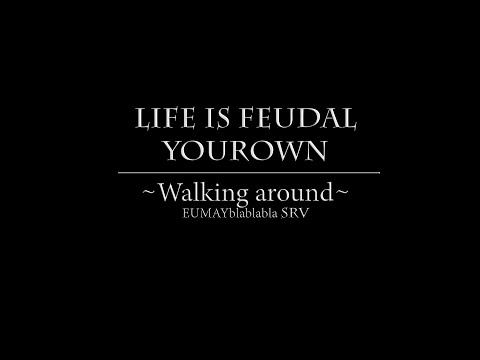 Life is feudal Your Own EUsrv  