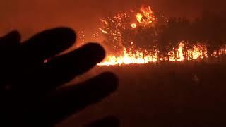 UNBELIEVABLE FIRE IN CAPE TOWN ( Betties bay/Pringle Bay )