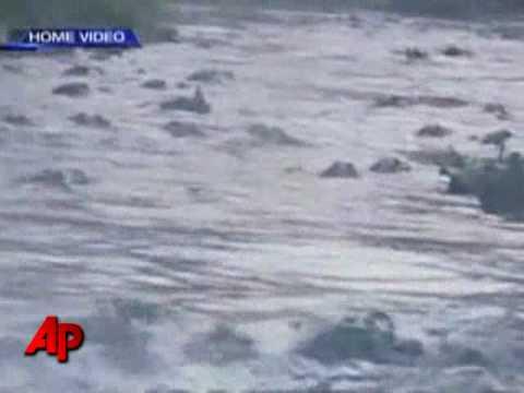 Alligator Feeding 'Frenzy' Caught On Tape