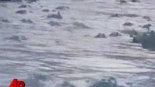 alligator-feeding-39-frenzy-39-caught-on-tape