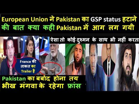 European Union ने Pakistan का GSP status हटाने की बात क्या कही Pakistan में आग लग गयी   pak media