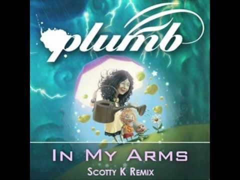 plumb in my arms remix bronleewe bose