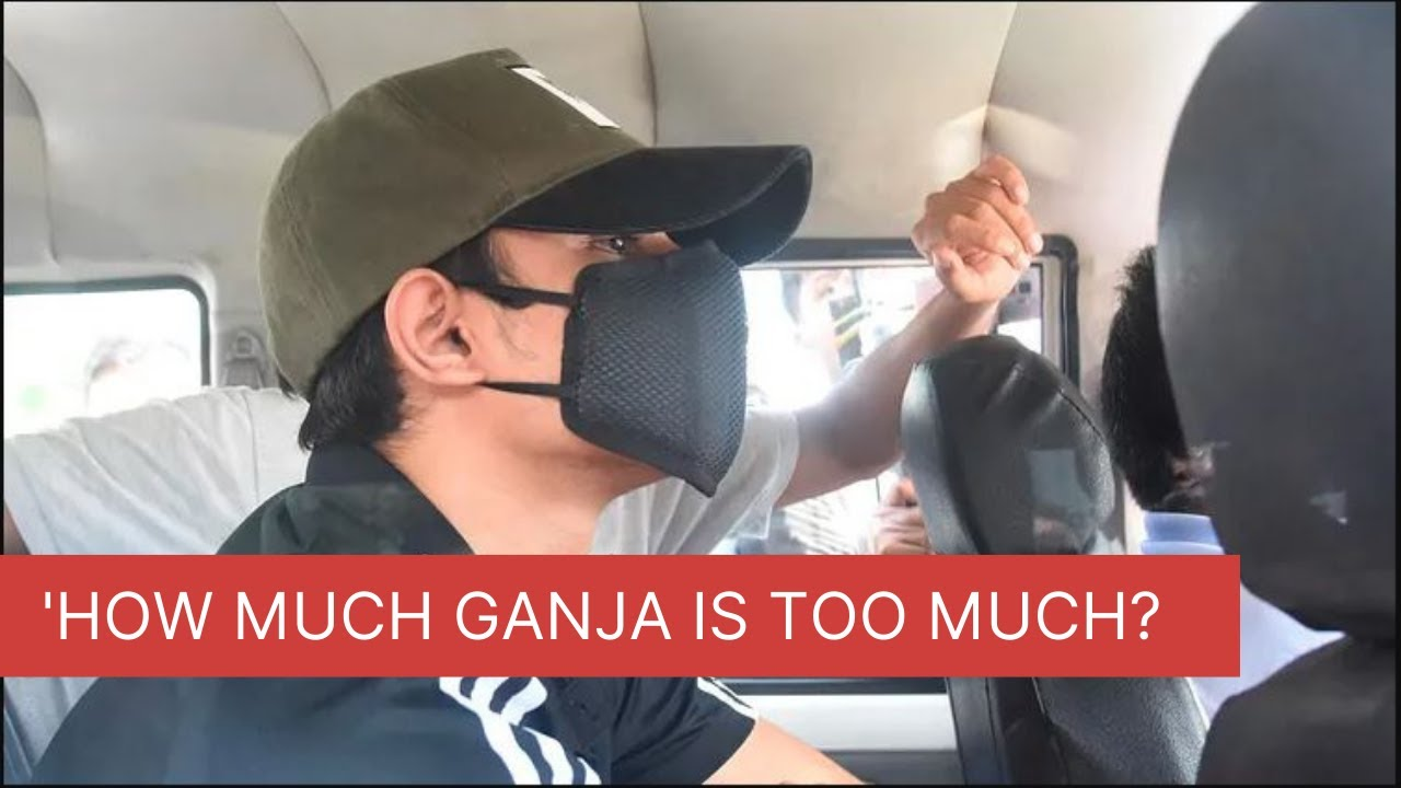 Download 'Showik is a Student with Little Ganja' | Shocking Arguments for Bail from Rhea and Showik