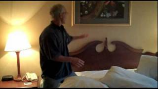 30 second bed bug control