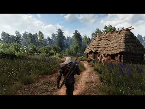 [8K] Witcher3 RTX 3090 - Vanilla lighting 2.0| Beyond all Limits Raytracing reshade | 50+Mods