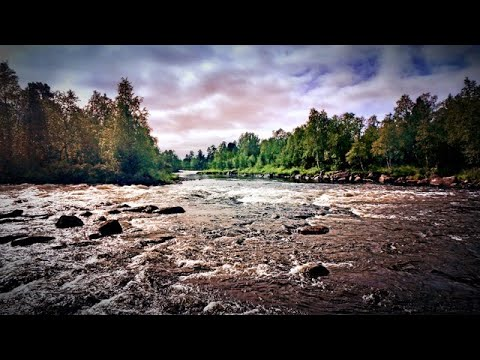 From Russia With Love (Atlantic Salmon Fishing)