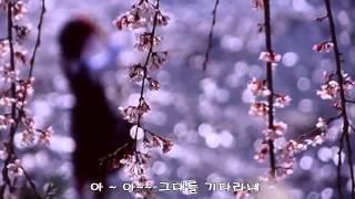 초연 (김연숙) - 색소폰연주 : 리차드김