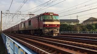 EH500【金太郎】貨物列車 秋の湘南を快走 Japan Railway/Japan Train