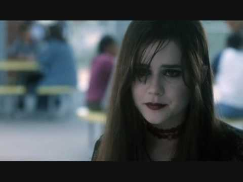 ALISON LOHMAN  from 1999 to 2009
