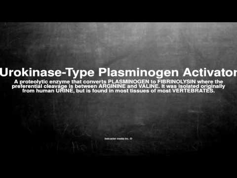 Medical vocabulary: What does Urokinase-Type Plasminogen Activator mean