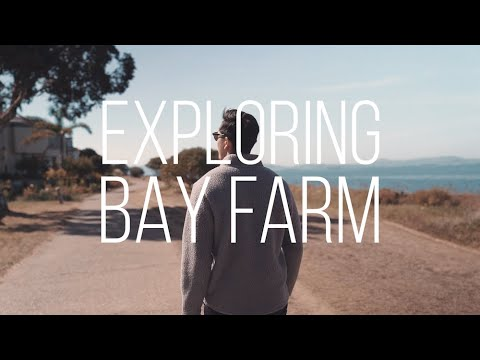 Neighborhood Spotlight  - Bay Farm Island (Alameda, CA)