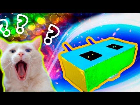 Как сделать тоннель для кошки