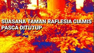 BULETIN TV | Senja Di Taman Raflesia Ciamis Pasca Ditutup