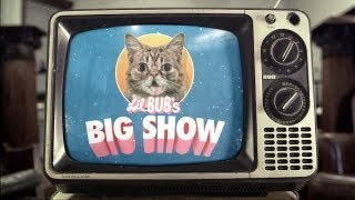 "Official ""Lil BUB's Big SHOW"" Trailer"