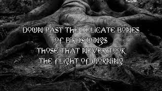 Mariee Sioux - Buried in Teeth Lyrics