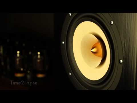 HiFi Speaker Movement in Slow Motion