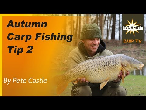 Carp Photos | French Carp Fishing Lake at Birchwater with Angling ...