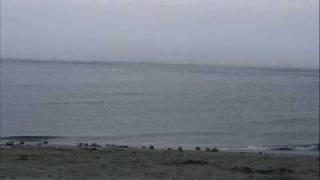 2009年5月4日 GWになんもしないのもあれなので 東京から千葉県の富津岬...