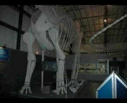 Two Medicine Dinosaur Center, Bynum, Montana