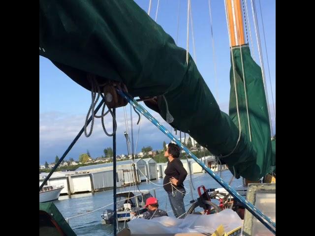 Born to Sail!