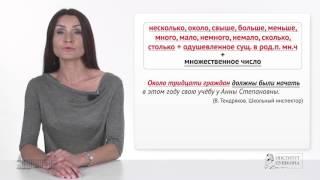Практический курс русского языка. Подлежащее и сказуемое. ННИГУ