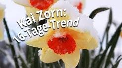 16-Tage-Trend mit Kai Zorn: Zwischen Frühlingsblühern und Schnee