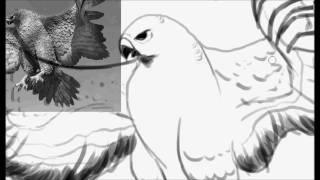 Speed drawing: Birds!