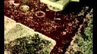 НОМЕРКИ(, 2012-08-01T06:43:12.000Z)