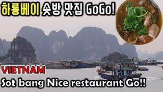 베트남 하롱베이 솟방 맛집! 처음으로 맛없는 쌀국수! …