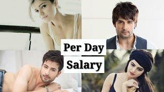 Per Day Salary of Shakti: Astitva Ke Ehsaas Ki