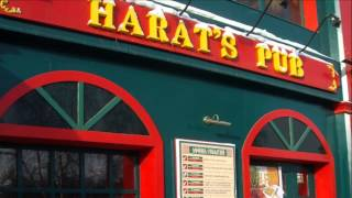 видео Франшиза ирландского паба Harat`s Irish Pub