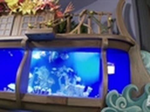 Atm 39 s most memorable tank tanked youtube for Atm fish tank