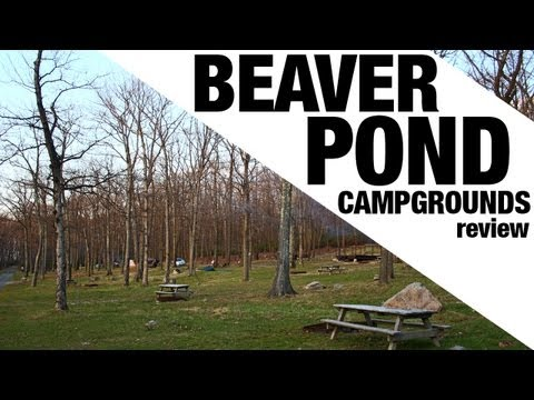 Beaver Pond Campgrounds (NY) Review