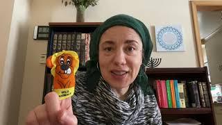 פרשת וארא | Morah Shulamit
