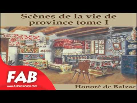 La Comédie Humaine: 05 - Scènes de la vie de province tome 1 (15-4-43) Part 1/2 Full Audiobook