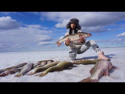 НЕРЕАЛЬНЫЙ КЛЁВ!Последний лёд 2020!Весенняя рыбалка в Казахстане!