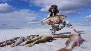 НЕРЕАЛЬНЫЙ КЛЁВ Последний лёд 2020 Рыбалка в Казахстане