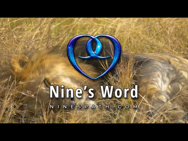 Give Yourself the Upper Hand | Nine's Word Pleiadian Message
