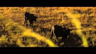The Land and Life of Pueblo Pintado