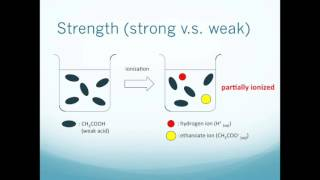 Unit 15 - Strength of acids and alkalis